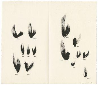 Kiran KATARA 14-1, Encyclopédie